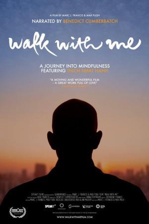 Camina conmigo (2017) WEB-DL Subtitulados