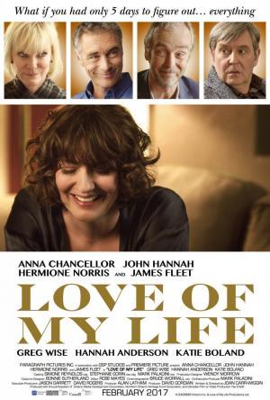 Love of My Life (2017) BluRay 720p Subtitulados