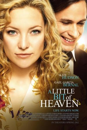 Amor por siempre (2011) BluRay 720p Subtitulados
