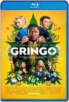 Gringo: Se busca vivo o muerto (2018) HD 1080p Dual Latino / Ingles