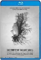 A Floresta das Almas Perdidas (2017) HD 720p Subtitulados