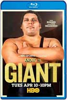 Andre the Giant (2018) HD 720p Subtitulados