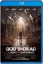 Dios no está muerto 3 (2018) HD 720p Latino