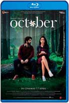 October (2018) WEB-DL 720p Subtitulados