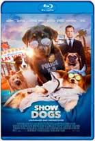 Show Dogs (2018) HD 1080p Dual Latino / Ingles