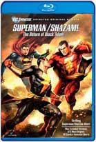 Superman / Shazam!: El Regreso de Black Adam (2010) HD 720p Español