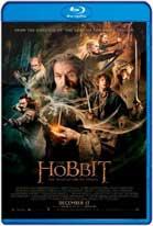 The Hobbit: The Desolation of Smaug (2013) HD 720p Subtitulados