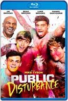 Public Disturbance (2018) HD 1080p Subtitulados