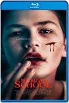 Boarding School (2018) HD 720p Subtitulados