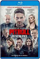 Pitbull: Last Dog (2018) HD 720p Subtitulados