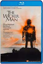 The Wicker Man (1973) HD 720p Subtitulados