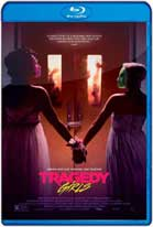 Tragedy Girls (2017) HD 720p Latino