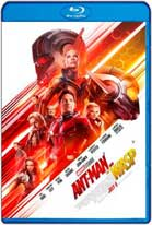 Ant-Man and The Wasp El hombre hormiga y La avispa (2018) HD 720p Latino