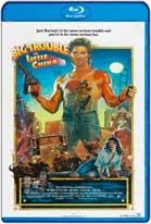 Rescate en el Barrio Chino (1986) HD 720p Subtitulados