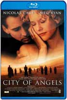 City of Angels (1998) HD 720p Subtitulados