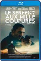 Le serpent aux mille coupures (2017) DVDRip Subtitulados
