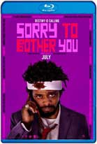 Sorry to Bother You (2018) HD 720p Latino y Subtitulados