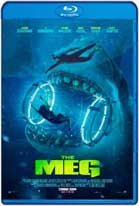 The Meg (2018) HDRip 720p Subtitulados