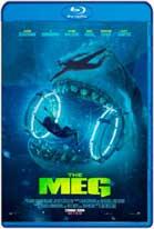 Megalodon (2018) HD 720p Latino
