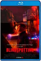Blindspotting (2018) HD 720p Latino