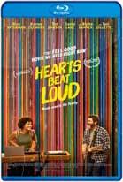 Hearts Beat Loud (2018) HD 720p Latino