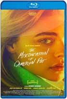 The Miseducation of Cameron Post (2018) WEBRip 720p Subtitulados