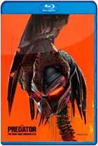 El Depredador (2018) HD 720p Latino