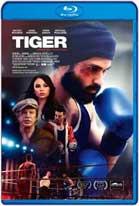 Tiger (2018) HD 720p Latino