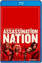 Assassination Nation (2018) HD 720p Subtitulados