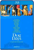 Dog Days (2018) HD 720p Subtitulados