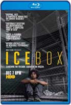 Icebox (2018) HD 720p Subtitulados