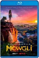 Mowgli Relatos del libro de la selva (2018) HD 720p Latino