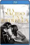 Nace una estrella (2018) HD 1080p Latino