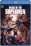El reino de los Supermanes (2019) HD  1080p Latino