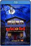 Trico Tri Happy Halloween (2018) HD 720p Latino