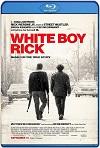 White Boy Rick (2018) HD 720p Latino