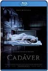 Cadáver (2018) HD 720p Latino