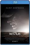 La mula (2018) HD 720p Latino Y Subtitulada