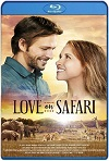 Love on Safari (2018) HD  720p Latino Y Subtitulada