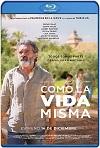 La vida misma (2018) HD 720p Latino y Subtitulada