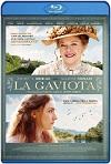 La gaviota (2018) HD 720p Latino Y Subtitulada