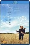 Van Gogh en la puerta de la eternidad (2018) HD 720p Latino/Subtitulada