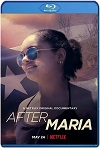 After Maria (2019) HD 720p Latino