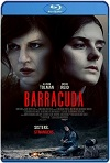 Barracuda (2017) HD 720p Latino/Subtitulada