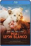 Mia y el león blanco (2018) HD 720p Latino/Subtitulada