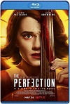 The Perfection (2018) HD  720p Latino/Subtitulada