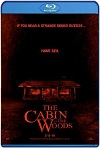 The Cabin In The Woods (2012) HD 720p Latino/Subtitulada