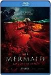 La sirena: la leyenda jamás contada (2018) HD 720p Latino/Subtitulada