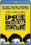 Tres idénticos desconocidos (2018) HD 720p Latino/Subtitulada