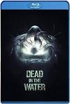 Dead in the Water (2018) HD 720p Latino y Subtitulada